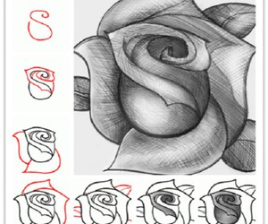 rose, drawing, and diy image