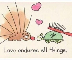 love, turtle, and cartoon image