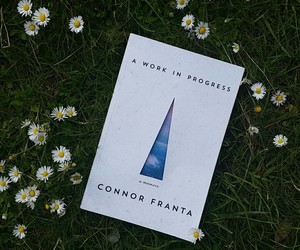 book, daisy, and nature image