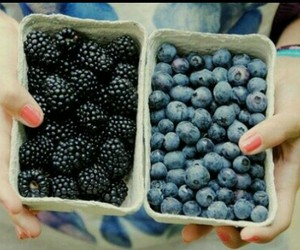 blackberry, food, and fruit image