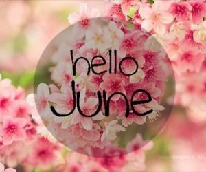 flowers, hello, and june image