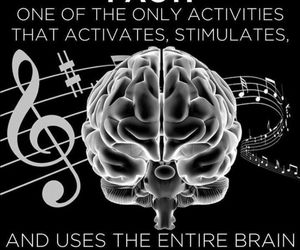 music, facts, and brain image