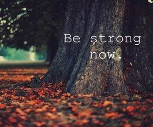 strong, autumn, and photography image