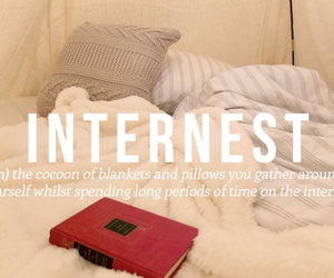 internet, internest, and funny image