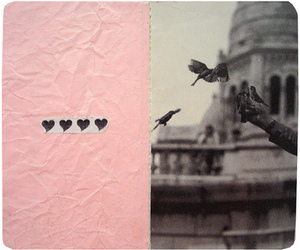 bird, Collage, and pink image