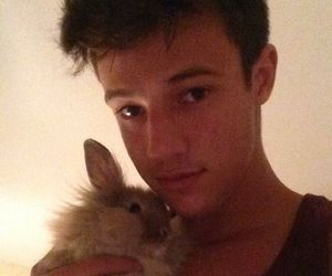 cameron dallas, magcon, and bunny image