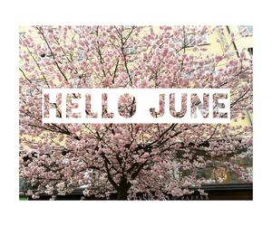 flowers, june, and pink image