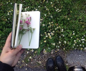 flowers, book, and green image