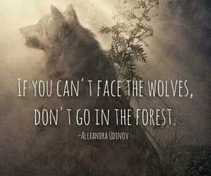 forest, Nikita, and quotes image