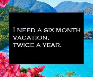 vacation, funny, and summer image
