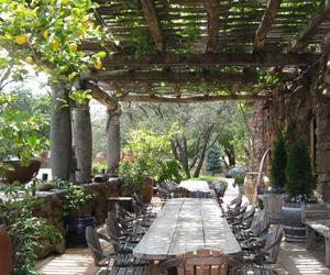garden, interior, and outdoor image