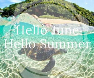 hello, ocean, and summer image