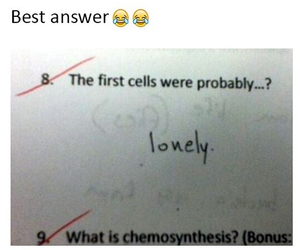 exam, smart, and funny image