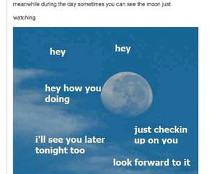 funny, tumblr, and moon image