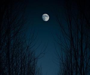 beautiful, luna, and night image