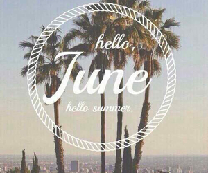 heat, june, and palm trees image
