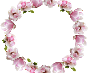 flower crown, png, and flowers image