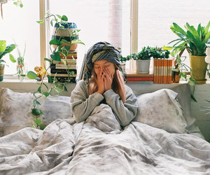 hippie, home, and plants image