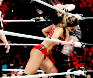 paige, wwe, and the bella twins image