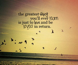 love, quotes, and bird image