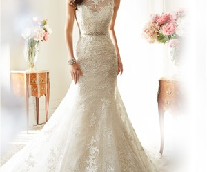 lace wedding dress image