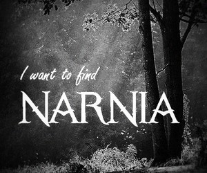 dreams, narnia, and hope image
