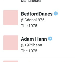bands, the 1975, and pink image