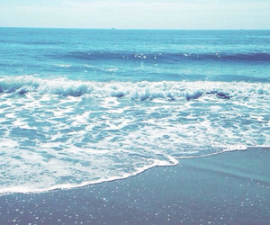 blue, paradise, and sea image