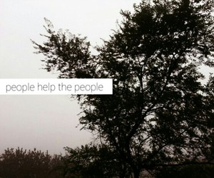 birdy, melancholic, and people help the people image