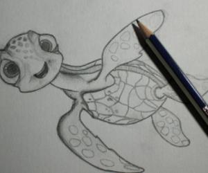 turtle and drawing image