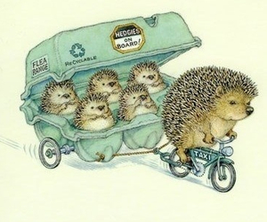 cute, hedgehog, and illustration image