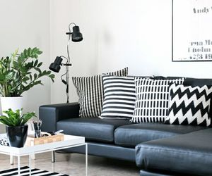 blackandwhite, interior, and living room image
