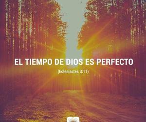 amen, bible, and god image