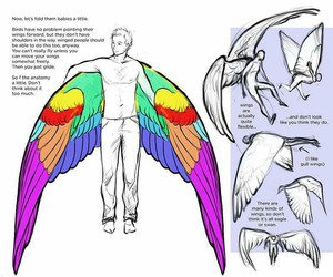 wings, angels, and draw image