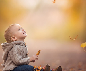 adorable, autumn, and leaves image