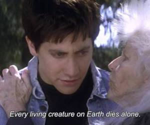 donnie darko, die, and quotes image