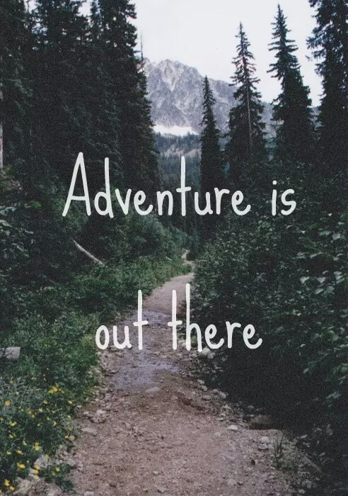 adventure, forest, and quote image