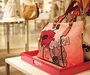 bag, coach, and pink image