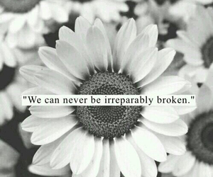 quotes, flowers, and broken image