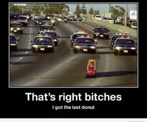 funny, cops, and donuts image