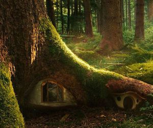 house, tree, and fairytale image