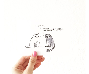 cat, cats, and creative image