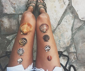 summer, shell, and legs image