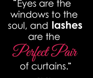 cosmetics, lashes, and woman image