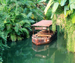 nature, boat, and green image