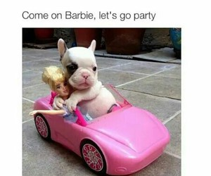 barbie, funny, and pink image