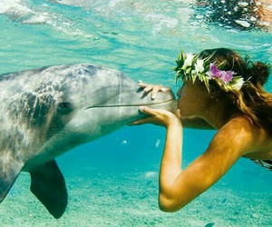 dolphin, flowers, and girl image