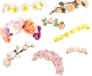 crowns, flowers, and flower crowns image