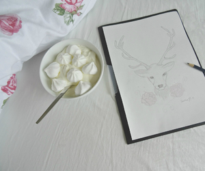 drawn, roses, and delicous image
