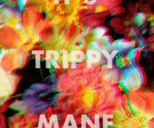 trippy, drugs, and flowers image